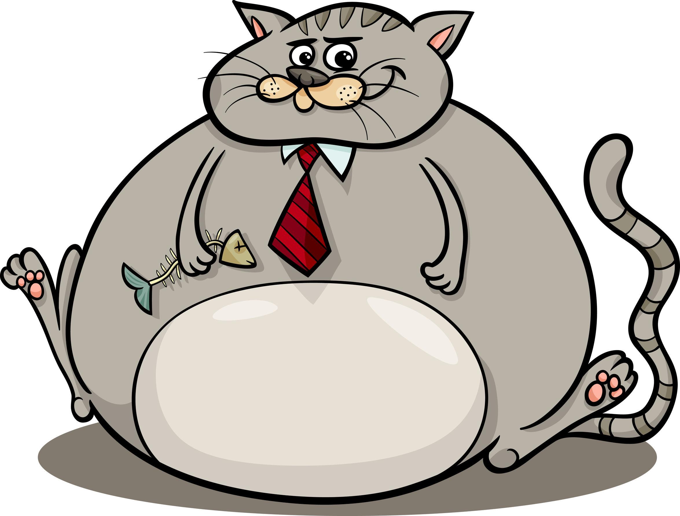 gruby-tłusty-kot-grafika.jpg