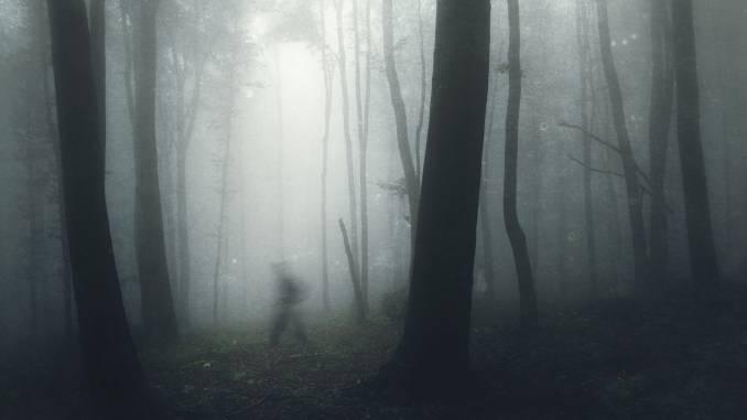 AOKIGAHARA-las-samobójców.jpg