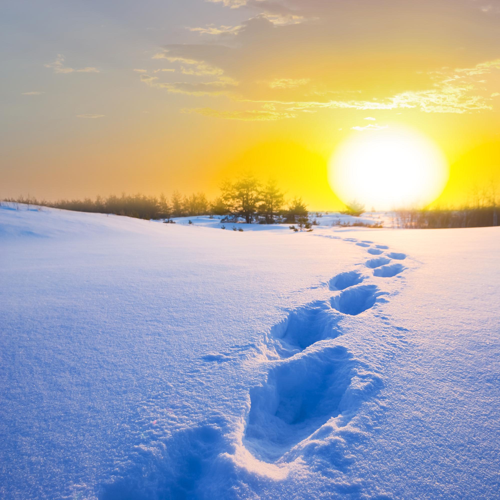 śnieg-na-pustyni.jpg