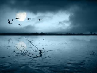 jezioro-bodom.jpg
