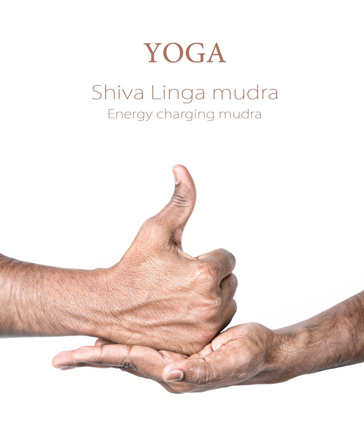 Linga-Mudra.jpg