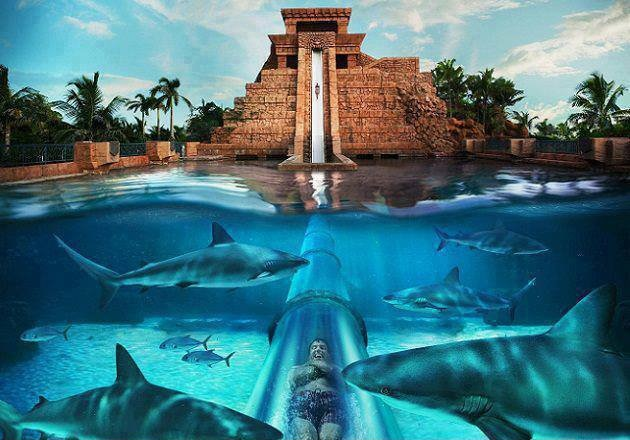 Zjeżdżalnia-Świątyni-Majów.jpg