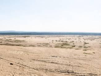 pustynia-błędowska.jpg