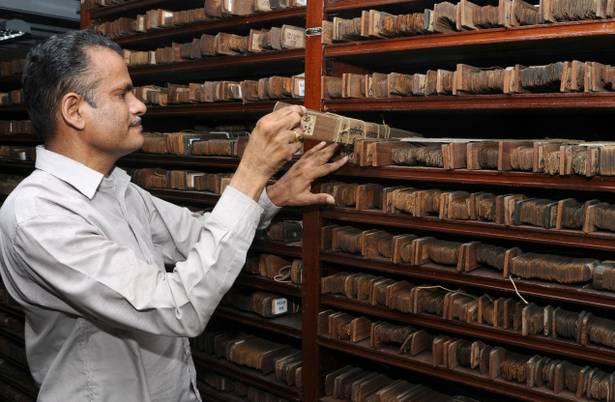 biblioteki-liści-palmowych.jpg