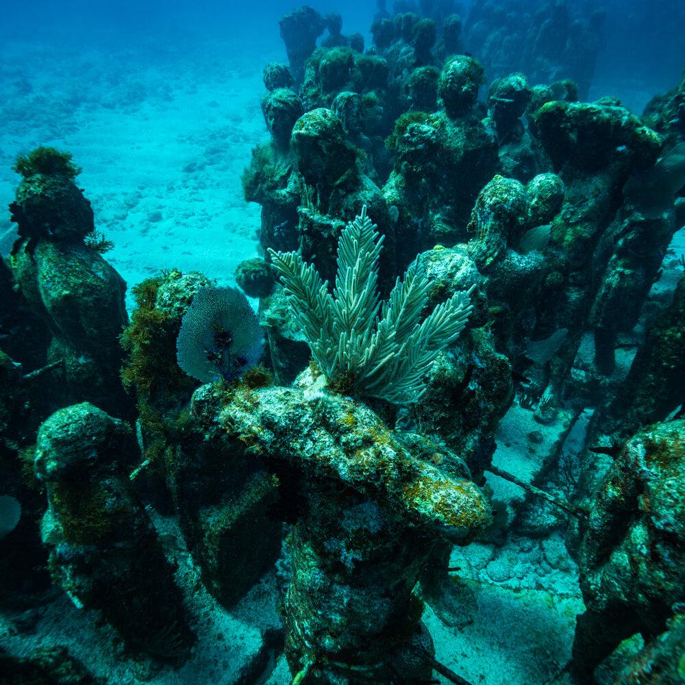 podwodne-muzeum-musa.jpg