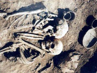 pochowana-żywcem.jpg
